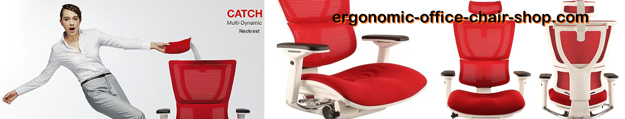 Ergonomic Office Chair Shop
