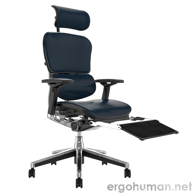 Ergonomic Office Chair with Leg Rest